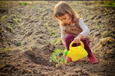 Ребенок и экология