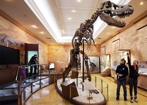 Музей естественной истории Татарстан