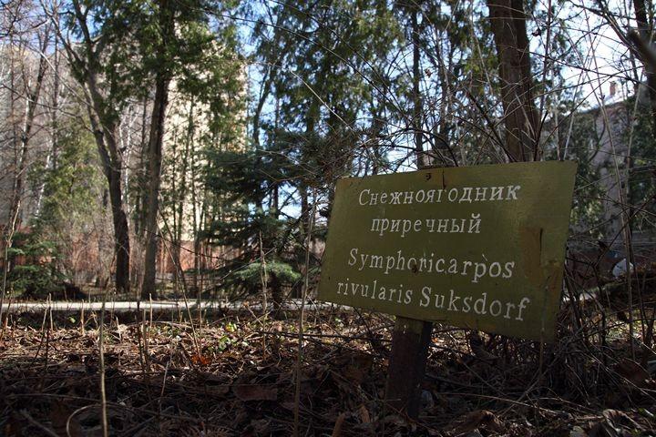 Казанский дендрарий на улице Товарищеская